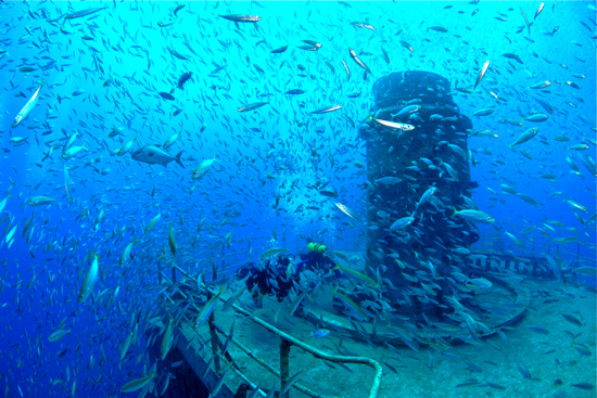 Divers swim over the former missile-tracking ship Gen. Hoyt S. Vandenberg amid thousands of fish Friday, May 21, 2010, off Key West, Fla., in the Florida Keys National Marine Sanctuary. A year after the ship was intentionally sunk May 27, 2009, the artificial reef has attracted more than 20,000 divers and 113 different species of fish.